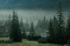 Mgła nad Rybim Potokiem