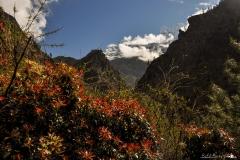 Himalaje 2013
