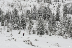 Zima tatrzańska