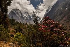 Dolina Khumbu